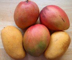 Wann ist eine Mango reif? Mit dem Reifetest eine saftig süße Mango erkennen