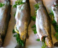 Frische Forellen vom Grill - so gelingt die Zubereitung
